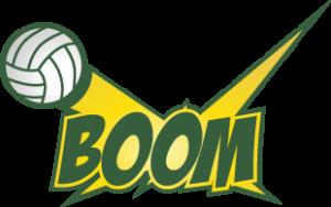 boom-310